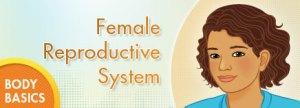 P_BodyBasics_FRS_enHD_1--Female