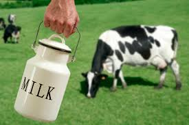 download (3)--cow milk