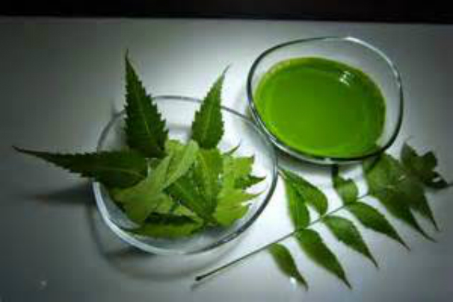 -Neem leave drink